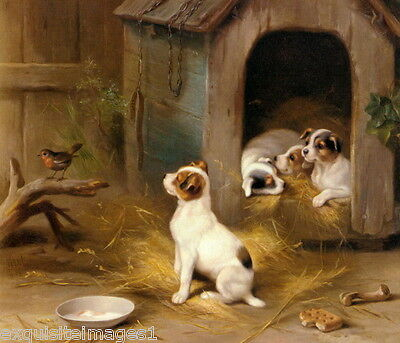1902 E.Hunt~Jack Russell Terrier Dog Dogs Puppy Puppies~Robin NEW Lge Note Cards