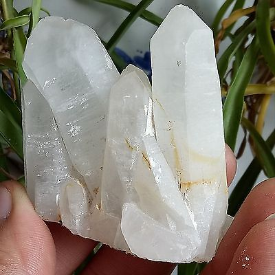 119G 60x35x60mm NATURAL WHITE Clear QUARTZ CRYSTAL CLUSTER Point HEALING New