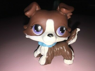 Littlest Petshop Puzzle Chien Collie / Colley Dog LPS Brown Blue Eyes Pet Shop
