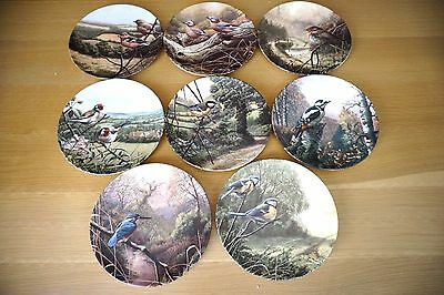 Treasures of the Morning Royal Doulton Collector Plates by Adrian C Rigby