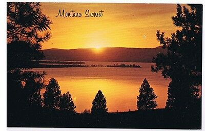 Montana Sunset - Postcard Unused # P64224