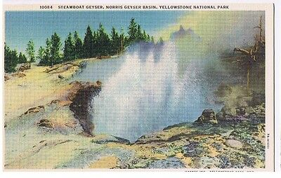 Steamboat Geyser - Yellowstone National Park  - Postcard
