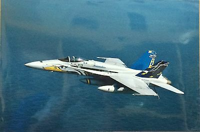 """US Navy Squadron VFA-82 Marauders, McDonnell F/A-18 Hornet - Real Photo 18""""x12"""""""