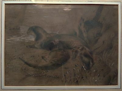 Original 19Th Century Antique Signed Pencil Graphite Drawing Of A Pair Of Otters