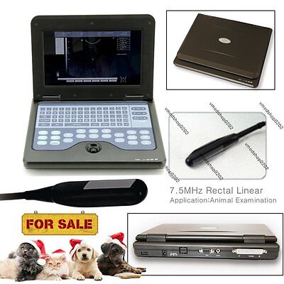 Portable Laptop VET Machine Veterinary Ultrasound Scanner Large Animal,Rectal,US