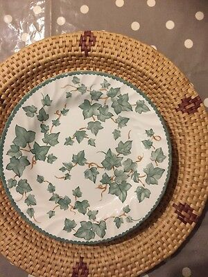 BHS Country Vine Pattern Pottery Collection Dinner Plates 26.5 cm approx