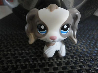 LPS Littlest Pet Shop N° # 2254 Sandy Cocker Spaniel Dog CHIEN BLYTHE Rare
