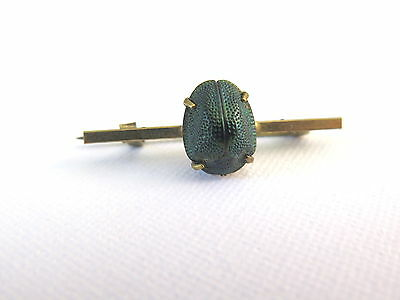 Antique edwardian real scarab pin brooch