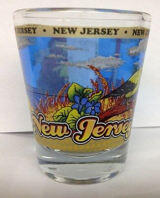 New Jersey State Shot Glass New
