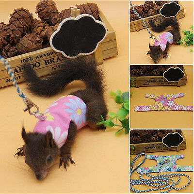 Small Animal Leash Rope For Hamster Rabbits Squirrel Guinea Pig Harness Leashes