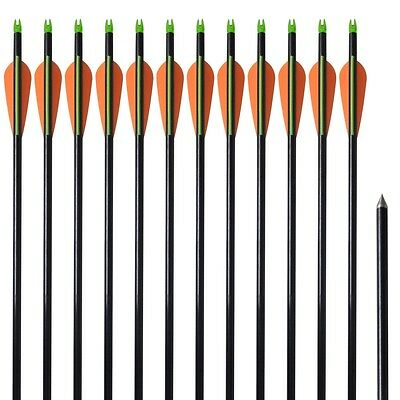 "#Archery Standard Recurve & Compound Bow Arrows 30"" 0.8 cm Fiberglass 12 pcs"