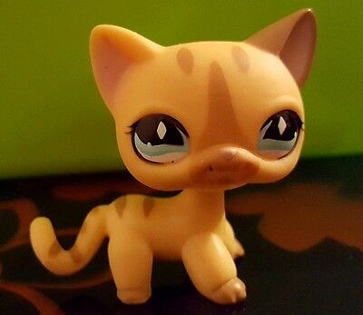 Littlest Petshop Lps Cat Chat Europeen 886 # Rare