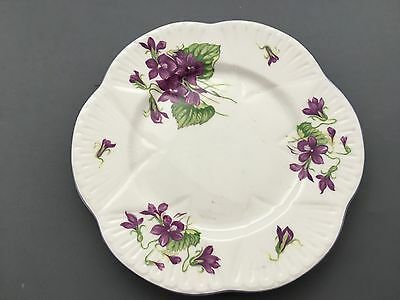 "Vintage Shelley Violets Dainty Shape 6,1/2"" Side Plate"
