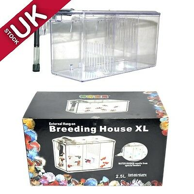Clear Large Size 3 Place External Hang-On Breeding House XL Professional Design
