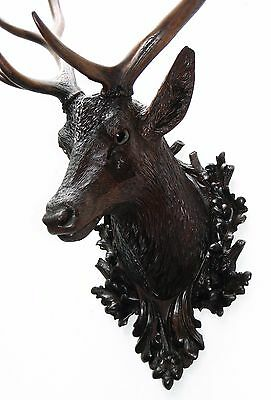Antique Black Forest Carved Wood Life Size Stag Head