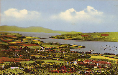 DINGLE CO. KERRY IRELAND IRISH POSTCARD PUBLISHED by K. GRIFFIN of DINGLE