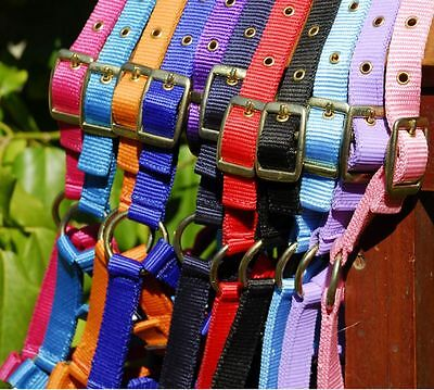 Adjustable Horse Headcollar - Shetland,Pony,Cob,Full  - 12 Colours - FREE P&P