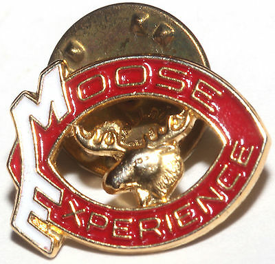 Vintage Moose Lodge Moose Experience Gold Tone Enameled Clutch Back Pin