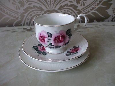 Vintage Retro Bone China Trio Pink roses Cup Saucer & Tea plate