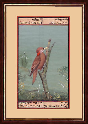 Mughal Period Bird Indian Miniature Painting on Old Handmade Paper
