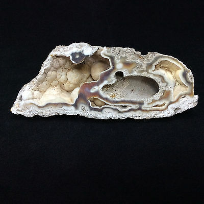 Agatized Fossil Coral 170782 82g Metaphysical Emotional Balance Healing