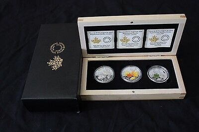 Canada 2014 Majestic Maple Leaves 3 Coin Set $20 Pure Silver Proofs Color Jade