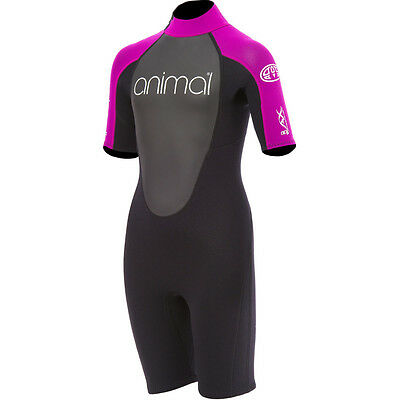 Animal Girls Nova Shorty 3/2 Wetsuit, Purple