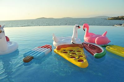 Inflatable Giant Flamingo Swan Unicorn Pool Float Ring Raft Pizza Pineapple Fun