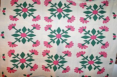 MATCHED PAIR of 20s floral (Mexican Rose?) Applique Antique Quilts.
