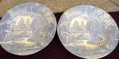 """2 Shallow Bowls Blue Transferware Burgess and Leigh ~Stoke on Trent Bowl 8 1/2"""""""