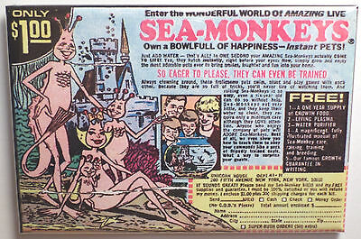 "Sea Monkey's Magnet 2""x3"" Refrigerator Locker Advertisement Retro Monkey Ad"