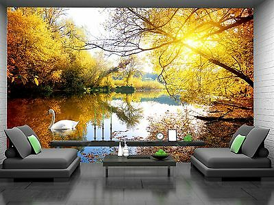 Gold Autumn, Swan  Wall Mural Photo Wallpaper GIANT WALL DECOR Paper Poster