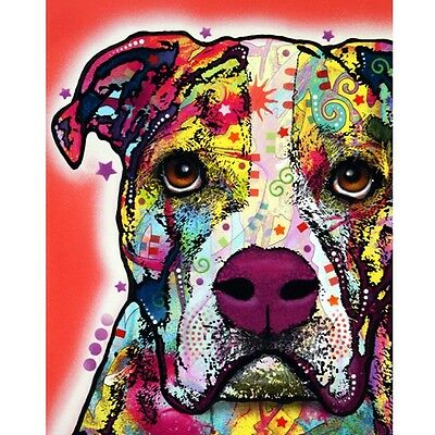 American Bulldog Print 8x10 by Dean Russo DISCONTINUED - Ships Free