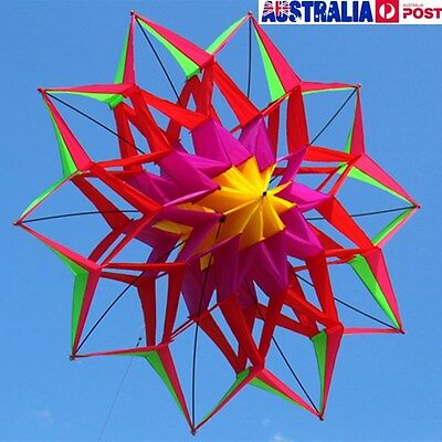3D Rainbow Colorful Flower Kite Single Line Sport Outdoor Wing Flying Kids Toy
