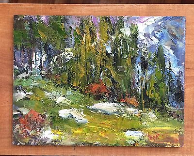 Rocky Mountain Art Original Signed Colorado Pikes Peak Oil Painting