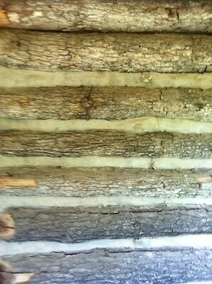 Log Cabin, Antique, Old, Original, Rustic, Historic