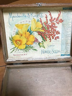 Antique Mandevill & King Co. Flower Seeds Wood Box nice condition
