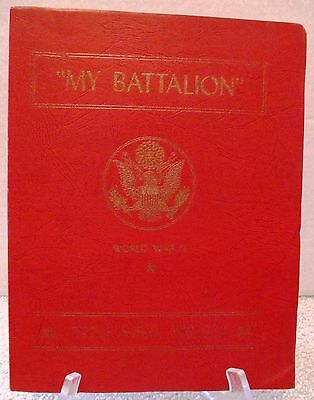 WWII My Battalion 795th AAA Unit History France Germany 1945