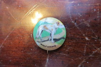 Old Wolf Hound button, pin, Greyhound, racing dogs