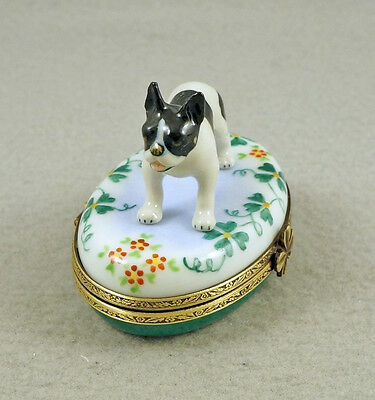 New French Limoges Trinket Box Cute Boston Terrier Dog Puppy On Lucky Clovers