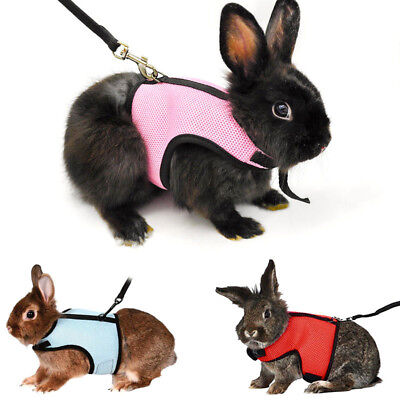 Rabbit Outdoor Strap Harness Vest Mesh Leash Stretchy Squirrel Bunny Suit