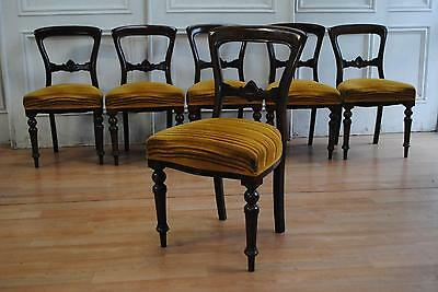 Elegant Set 6 Antique Victorian Mahonay Spade / Buckle Back Dining Chairs