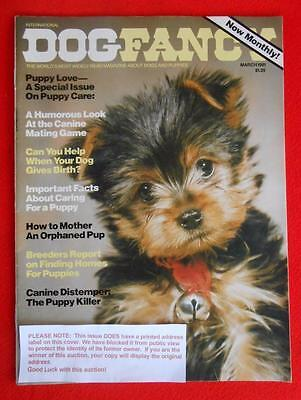 RARE ~ YORKIE YORKSHIRE TERRIER Cover Issue ~ DOG FANCY Magazine ~ March 1981