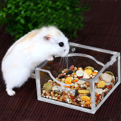 Small Pet Hamster Mouse Rat Gerbil Acrylic Food Water Bowl Clear Feeding Bowl
