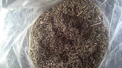 Catnip Loose Twenty Eight Grams Bags