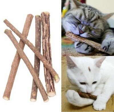 Natural Pet Cat Tooth Cleaning Tasty Stick Catnip Snacks Cat Toothpaste Toy Gift