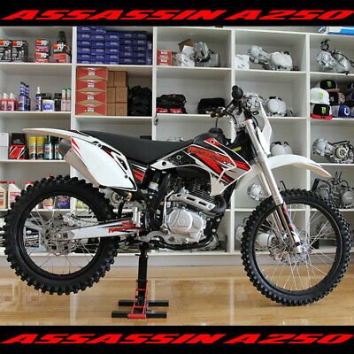 Assassin A-250R 250CC 4 Stroke Electric Start 18'' Rear 21'' Front