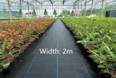100g 2m wide weed control fabric ground Garden cover membrane landscape mulch