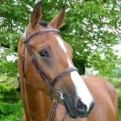 Dy'on Cavesson Hunter US Wide Noseband Bridle - Brown - Cob, Full, Oversize