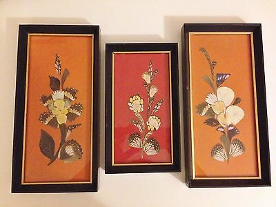 Set of 3 Vintage Butterfly Wings Framed Art Pictures Red Orange Wall Hangings